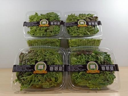 全新優質即食綜合生菜6盒<優惠免運中>(內涵優質新鮮的歐式生菜,綠火焰、紅火焰、綠橡木、紅橡木,紅捲萵苣....等等。)