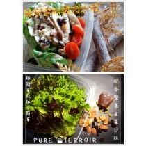 穀物藜麥雞肉沙拉X4+綜合堅果生菜沙拉X2(免運優惠中)