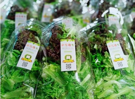 來吉蔬食C方案特惠組(6包裝即食綜合歐式生菜包買5送1)