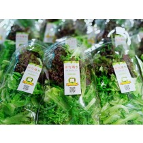【安全鮮活生菜】全新生活優質綜合歐式生菜6包(打開即可食用)